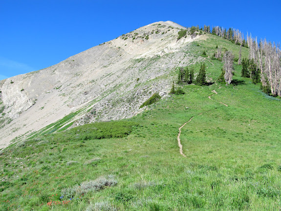 Trail up Mt. Nebo from Wolf Pass
