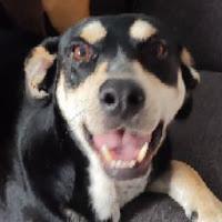 Alejandra Valeria López Landa's avatar