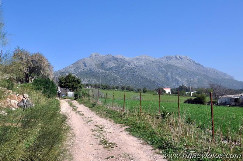 Cortes de la Frontera - Llanos de Libar - Benaojan