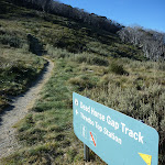 Dead Horse Gap track sign (283895)
