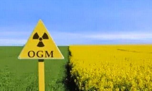 Nuova direttiva europea su OGM pubblicata su Gazzetta Ufficiale