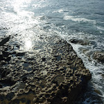 Light on rocks near Bare Island (308171)