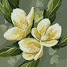 Ruchi Smita