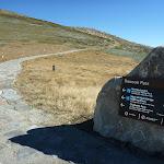 Rawson Pass Looking towads Mt Kosciuszko (266111)