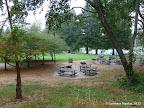 Harvey West Park - picnic area