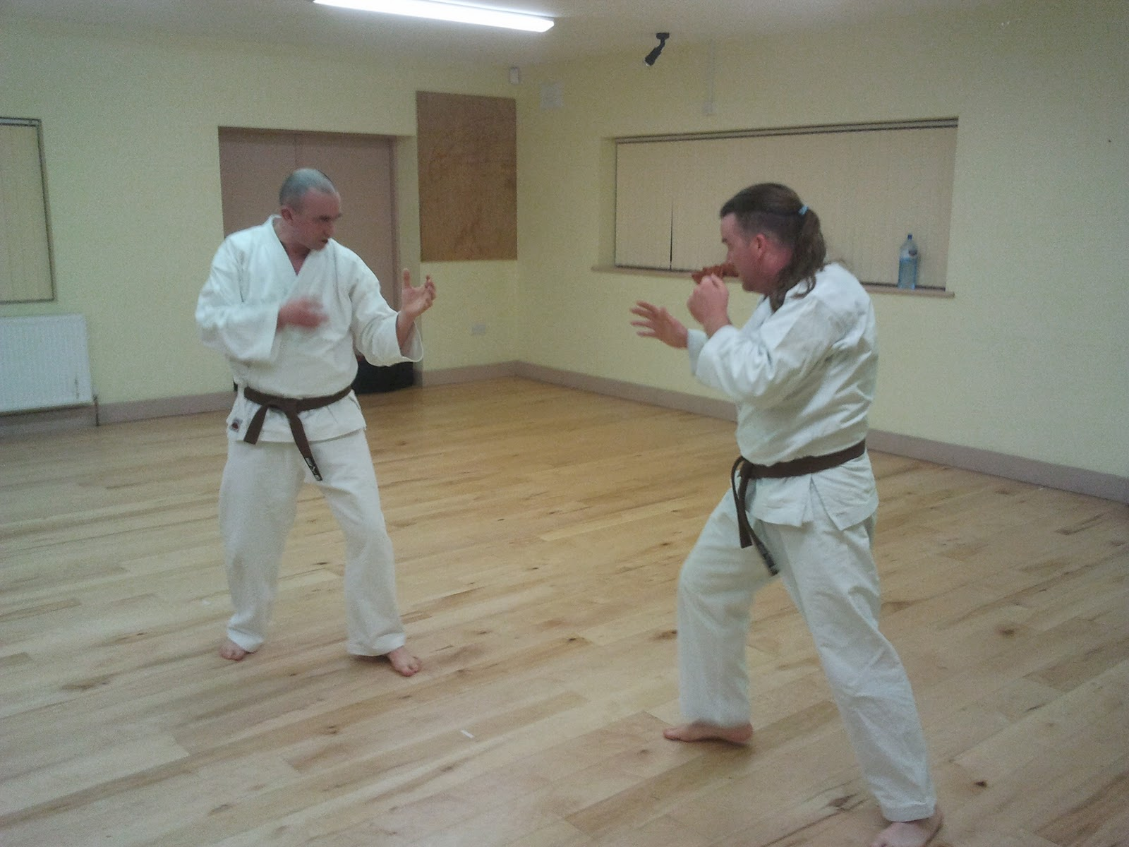 zanshin karate do midlands brown belt grading