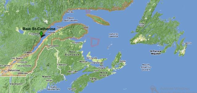 Baie Saint Catherine - croaziera balene