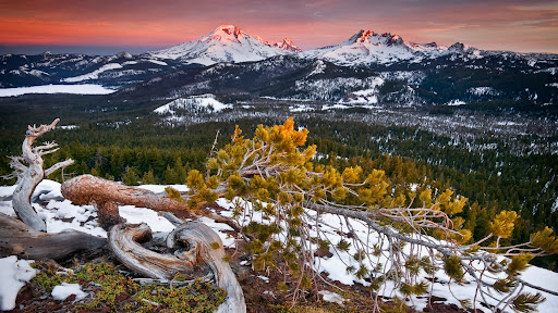 Three Sisters Wilderness at Sunrise, Oregon Cascade Range, Oregon.jpg