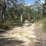 Elvina Track near West Head Rd. (304413)