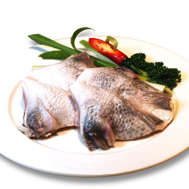 潮鯛魚下巴