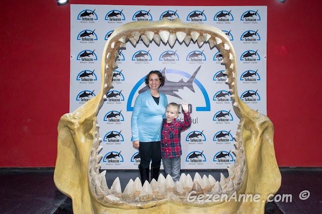 köpek balığı ağzının içinde hatıra fotoğrafı, Turkuazoo Forum İstanbul