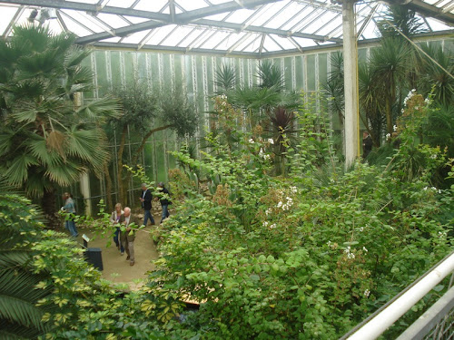 Casa Verde - Orto Botanico al Kasteeltuinen di Arcen