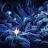 Morg B. avatar image