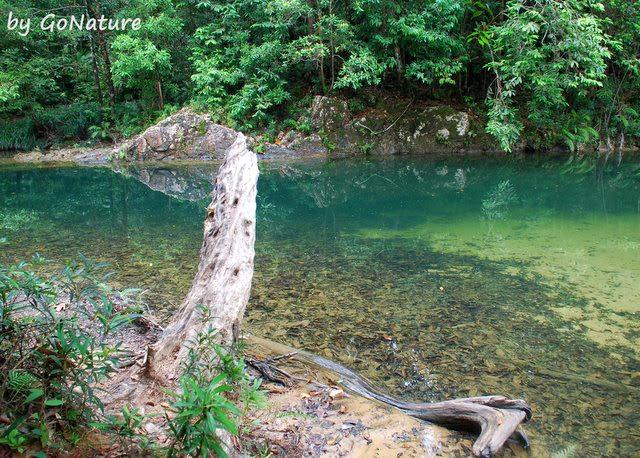 Taman-Negara-Endau-Rompin-National-Park