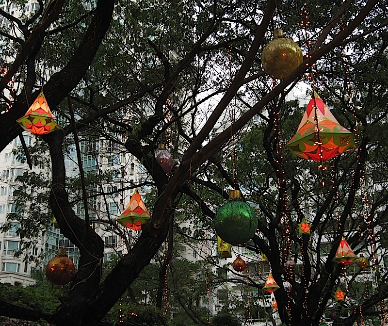 lanterns and string lights hanging from the trees in Salcedo Park