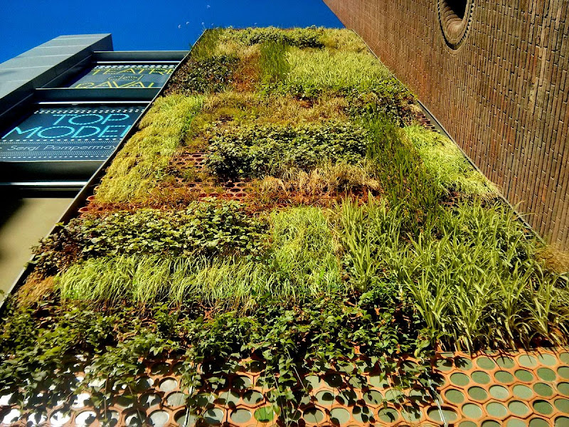 fachada vegetal barcelona jardn vertical