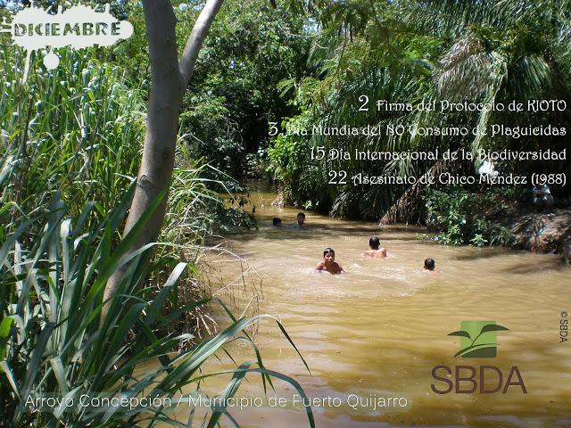 Calendario Ambiental SBDA Diciembre