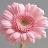 Subhashini B avatar image