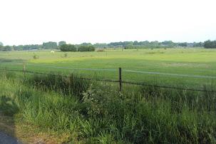Marche Kennedy (80km) de Etten-Leur (NL) :11-12 mai 2012 DSC03032