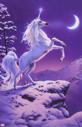 unicorn_aug05%252520%2525281%252529.jpg