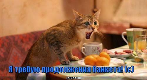 trebuyu-prodolzheniya_1305869902.jpg