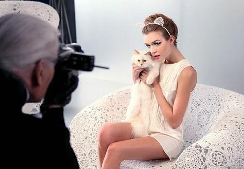 Thu cung cua Karl Lagerfeld kiem duoc 3 trieu euro