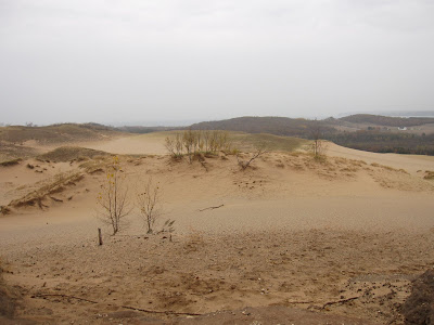 Sleeping Bear dunes in fall