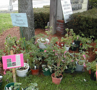 Northborough Garden Club