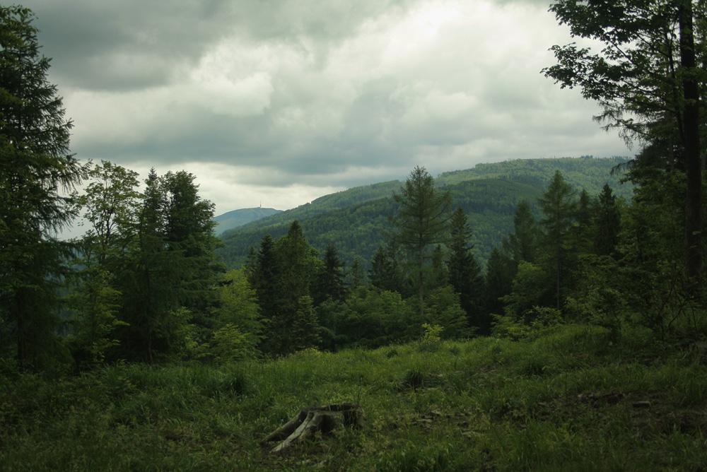 Widoki z Koziej Góry