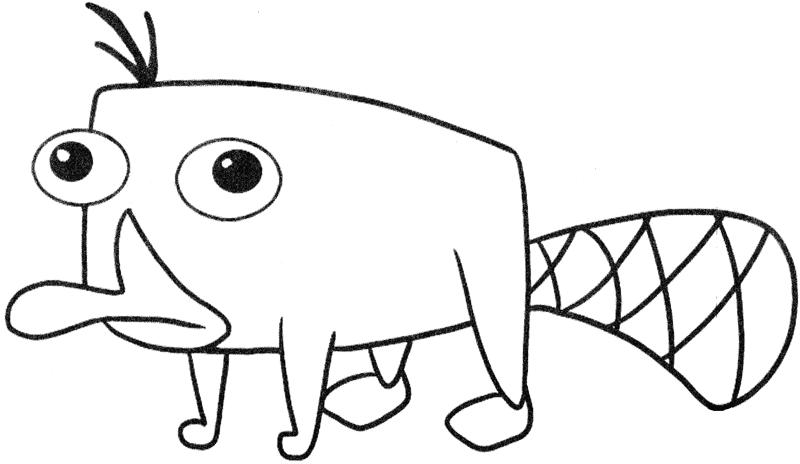Dibujos ornitorrinco para colorear - Imagui
