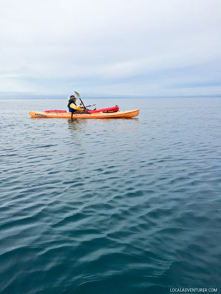 Kayaking in Monterey Bay with Adventures by the Sea.