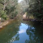 Piles Creek (178560)