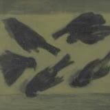 斑鴨01.jpg