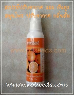 สเปรย์ปรับอากาศ ให้กลิ่นส้มหอม พร้อมคุณสมบัติกันยุง