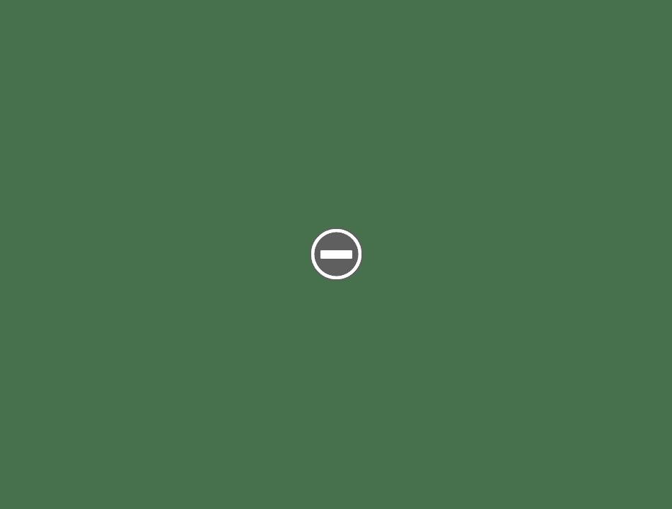 Gillette  Criterion Gold de Luxe  1930 (New Improved ?) IMG_0117+%2528Custom%2529