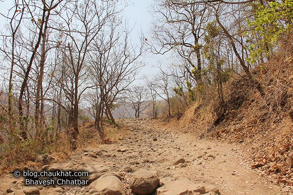 Going uphill towards Sinhgadh Valley during the hardest time of the year, which is the month of May