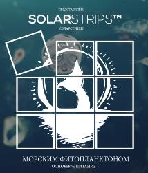 Купить здесь SolarStrips