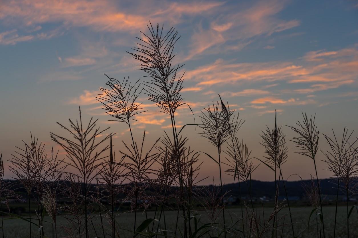日没後、変化し始めた空の色