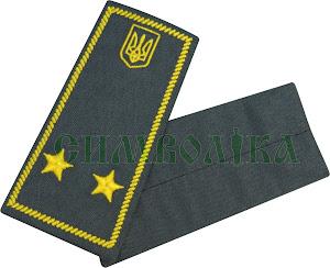 Погони / митна служба/  інспектор 3 рангу / сірі