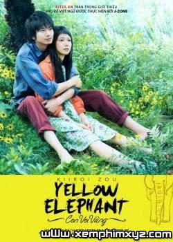 Chú Voi Vàng - Yellow Elephant