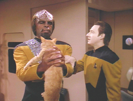 Brent Spiner, Michael Dorn, and a cat
