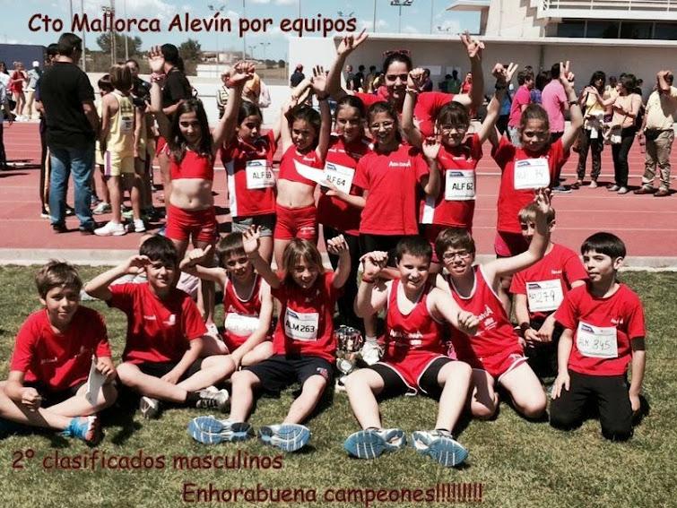 Equipo alevin femenino masculino