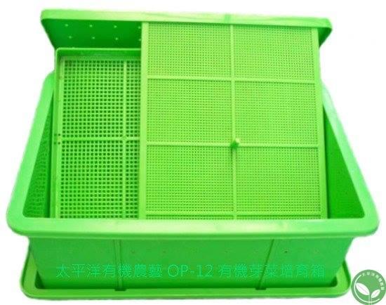 有機芽菜箱