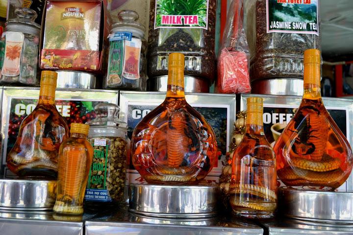 Змея в бутылке