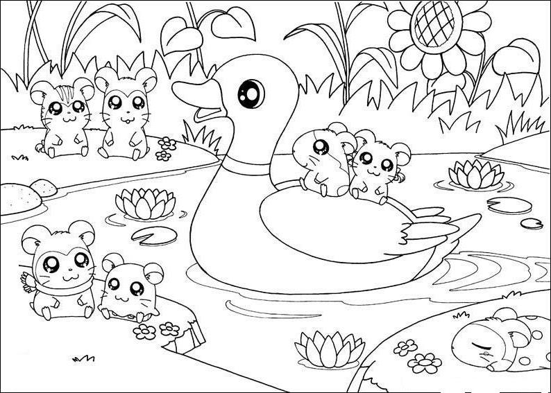 Dibujos Infantiles Para Colorear De Hamsters: Pinto Dibujos: Hamsters El Campo Para Colorear