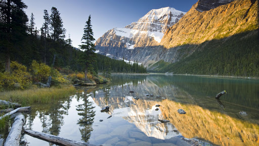 Mount Edith Cavell Reflected in Cavell Lake, Jasper National Park, Alberta.jpg