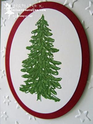 stampin up, christmas, weihnachten, evergreen, immergrün, stars, sterne,