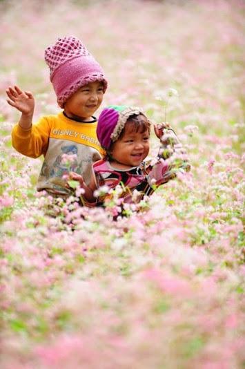 kham pha ban do hoa tam giac mach Khám phá bản đồ hoa tam giác mạch