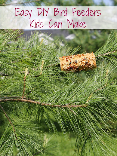 2 Easy DIY Bird Feeders Kids Can Make