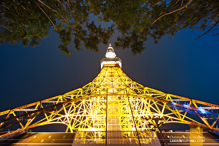 Golden Light from Japan's Tokyo Tower